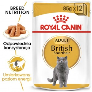 ROYAL CANIN British Shorthair Adult SOS 85g
