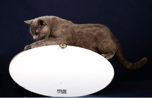 HOUSE OF CATS Drapak Mebel Cat Roll